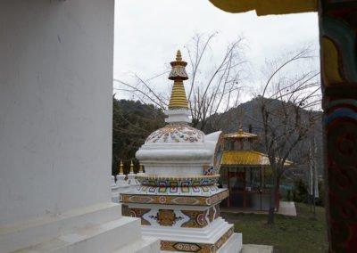 Dag Shang Kagyü-7995